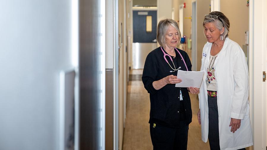 Two doctors going over paperwork