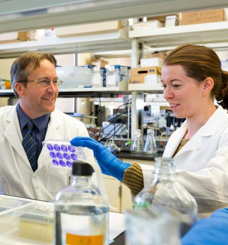 Alergólogos mirando muestras en laboratorio.